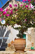 Kamilari | South Crete | Greece  Photo 39 - Photo GreeceGuide.co.uk