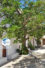 Agia Moni near Diakofti | Kythira | Greece  4 - Photo GreeceGuide.co.uk