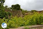 Aroniadika Kythira | Ionian Islands | Greece | Greece  Photo 7 - Photo GreeceGuide.co.uk
