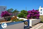 Avlemonas Kythira | Ionian Islands | Greece | Greece  78 - Photo GreeceGuide.co.uk