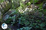 Near the water resources of Karavas   Kythira   Photo 19 - Photo GreeceGuide.co.uk
