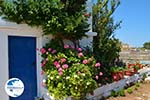 Kalokerines Kythira | Ionian Islands | Greece | Photo 13 - Photo GreeceGuide.co.uk