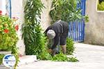 Karvounades Kythira | Ionian Islands | Greece | Greece  Photo 10 - Photo GreeceGuide.co.uk