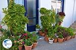 Kythira town (Chora) | Greece | Greece  175 - Photo GreeceGuide.co.uk