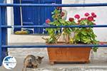 Mylopotamos Kythira | Ionian Islands | Greece | Greece  Photo 5 - Photo GreeceGuide.co.uk