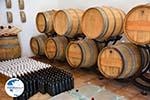 Wijnmakerij near Kalokerines and Karvounades | Kythira Photo 20 - Photo GreeceGuide.co.uk