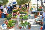 Markt Potamos Kythira | Ionian Islands | Greece | Greece  Photo 4 - Photo GreeceGuide.co.uk