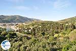 Andros town (Chora) | Greece  | Photo 002 - Photo GreeceGuide.co.uk