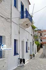 Batsi | Island of Andros | Greece  | Photo 42 - Photo GreeceGuide.co.uk