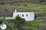 To the monastery of Panachrantou | Island of Andros | Greece  011 - Photo GreeceGuide.co.uk