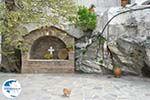 Panachrantou monastery | Island of Andros | Greece  | Photo 19 - Photo GreeceGuide.co.uk