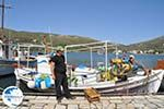 The harbour of Gavrio | Island of Andros | Greece  | Photo 12 - Photo GreeceGuide.co.uk