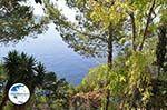 Paleokastritsa (Palaiokastritsa)   Corfu   Ionian Islands   Greece  - Photo 38 - Photo GreeceGuide.co.uk
