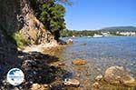 Dasia (Dassia) | Corfu | Ionian Islands | Greece  - Photo 4 - Photo GreeceGuide.co.uk