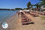 Dasia (Dassia) | Corfu | Ionian Islands | Greece  - Photo 5 - Photo GreeceGuide.co.uk