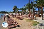 Dasia (Dassia) | Corfu | Ionian Islands | Greece  - Photo 6 - Photo GreeceGuide.co.uk