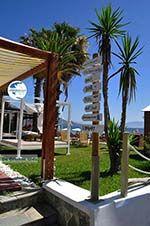 Dasia (Dassia) | Corfu | Ionian Islands | Greece  - Photo 10 - Photo GreeceGuide.co.uk