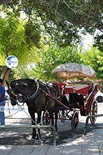 Corfu town   Corfu   Ionian Islands   Greece  - Photo 2 - Photo GreeceGuide.co.uk