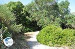 Pelekas Keizers' troon | Corfu | Ionian Islands | Greece  - Photo 13 - Photo GreeceGuide.co.uk