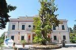 Mon Repos | Corfu | Ionian Islands | Greece  - Photo 7 - Photo GreeceGuide.co.uk
