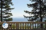 Mon Repos | Corfu | Ionian Islands | Greece  - Photo 21 - Photo GreeceGuide.co.uk