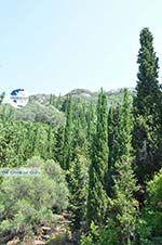 nature near Agios Gordis | Corfu | Ionian Islands | Greece  - Photo 1 - Photo GreeceGuide.co.uk