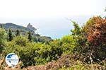nature near Agios Gordis | Corfu | Ionian Islands | Greece  - Photo 4 - Photo GreeceGuide.co.uk