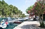 Gaios | Island of Paxos (Paxi) near Corfu | Ionian Islands | Greece  | Photo 100 - Photo GreeceGuide.co.uk