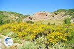 nature near Achata Beach | Greece  | Island of Karpathos - Photo GreeceGuide.co.uk