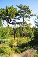nature in the oosten of Karpathos | Greece  002 - Photo GreeceGuide.co.uk