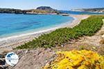 Lefkos | Karpathos island | Dodecanese | Greece  Photo 018 - Photo GreeceGuide.co.uk