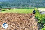 Avlonas near Olympos | Karpathos | Greece  Photo 6 - Photo GreeceGuide.co.uk