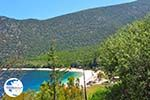 Antisamos - Antisami - Cephalonia (Kefalonia) - Photo 249 - Photo GreeceGuide.co.uk