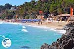 Makris Gialos-beach Lassi - Cephalonia (Kefalonia) - Photo 290 - Photo GreeceGuide.co.uk