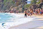 Makris Gialos-beach Lassi - Cephalonia (Kefalonia) - Photo 294 - Photo GreeceGuide.co.uk