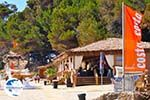 Makris Gialos-beach Lassi - Cephalonia (Kefalonia) - Photo 295 - Photo GreeceGuide.co.uk