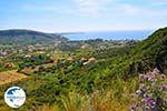 Katelios and the Katelios bay - Cephalonia (Kefalonia) - Photo 366 - Photo GreeceGuide.co.uk