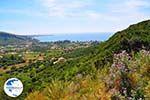 Katelios and the Katelios bay - Cephalonia (Kefalonia) - Photo 368 - Photo GreeceGuide.co.uk