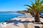 Argostoli - Cephalonia (Kefalonia) - Photo 494 - Photo GreeceGuide.co.uk