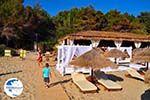 beach Makris Gialos Lassi - Cephalonia (Kefalonia) - Photo 499 - Photo GreeceGuide.co.uk