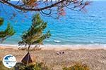 beach Makris Gialos Lassi - Cephalonia (Kefalonia) - Photo 502 - Photo GreeceGuide.co.uk