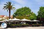 Argostoli - Cephalonia (Kefalonia) - Photo 577 - Photo GreeceGuide.co.uk