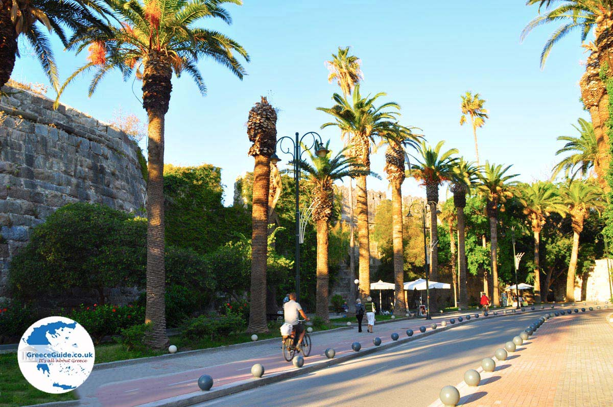 Gallery images and information kos greece nightlife -  Kos Town Kos Town Island Of Kos Greece Photo 138