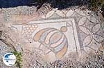 Archaeological ruins Kos town | Island of Kos | Greece Photo 8 - Photo GreeceGuide.co.uk