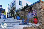 Kos town (Kos-town) | Island of Kos | Greece Photo 61 - Photo GreeceGuide.co.uk
