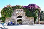 Kos town (Kos-town) | Island of Kos | Greece Photo 93 - Photo GreeceGuide.co.uk