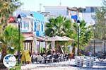 Mastichari Kos | Island of Kos | Greece Photo 9 - Photo GreeceGuide.co.uk