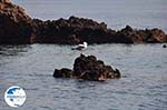 Island of Formekula near Lefkada - Greece - Photo 4 - Photo GreeceGuide.co.uk