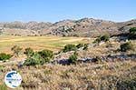 Englouvi, waar linzen geteeld worden - Lefkada (Lefkas) - Photo GreeceGuide.co.uk