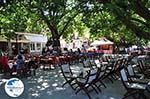 The cosy square of Karia (Karya) Photo 2 - Lefkada (Lefkas) - Photo GreeceGuide.co.uk